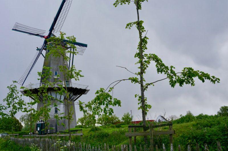Korenmolen 'Nooit gedagt' op de vestingwal van Woudrichem