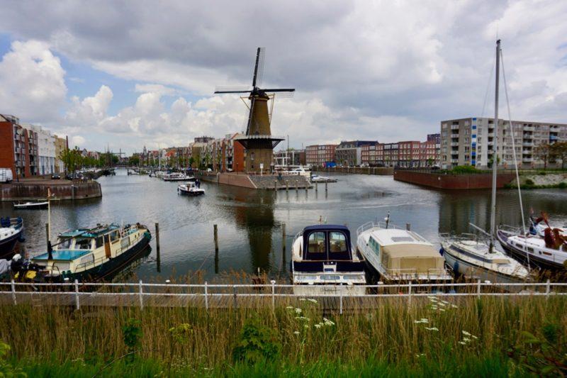 Jachthaven Oud Delfshaven in de Middenkous met uitzicht op windkorenmolen 'De distilleerketel'.