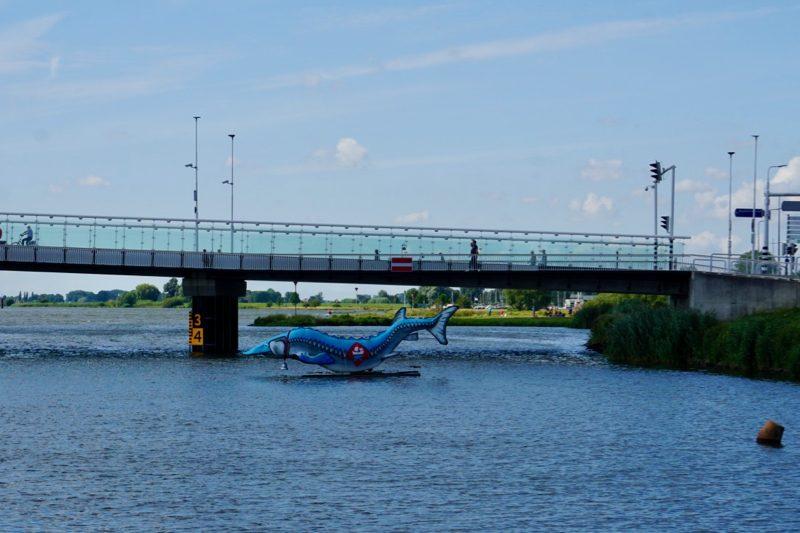 De steur met de bel om voor de Stadsbrug bij Kampen